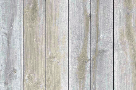 White birch hardwood