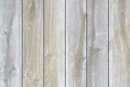 White birch hardwood